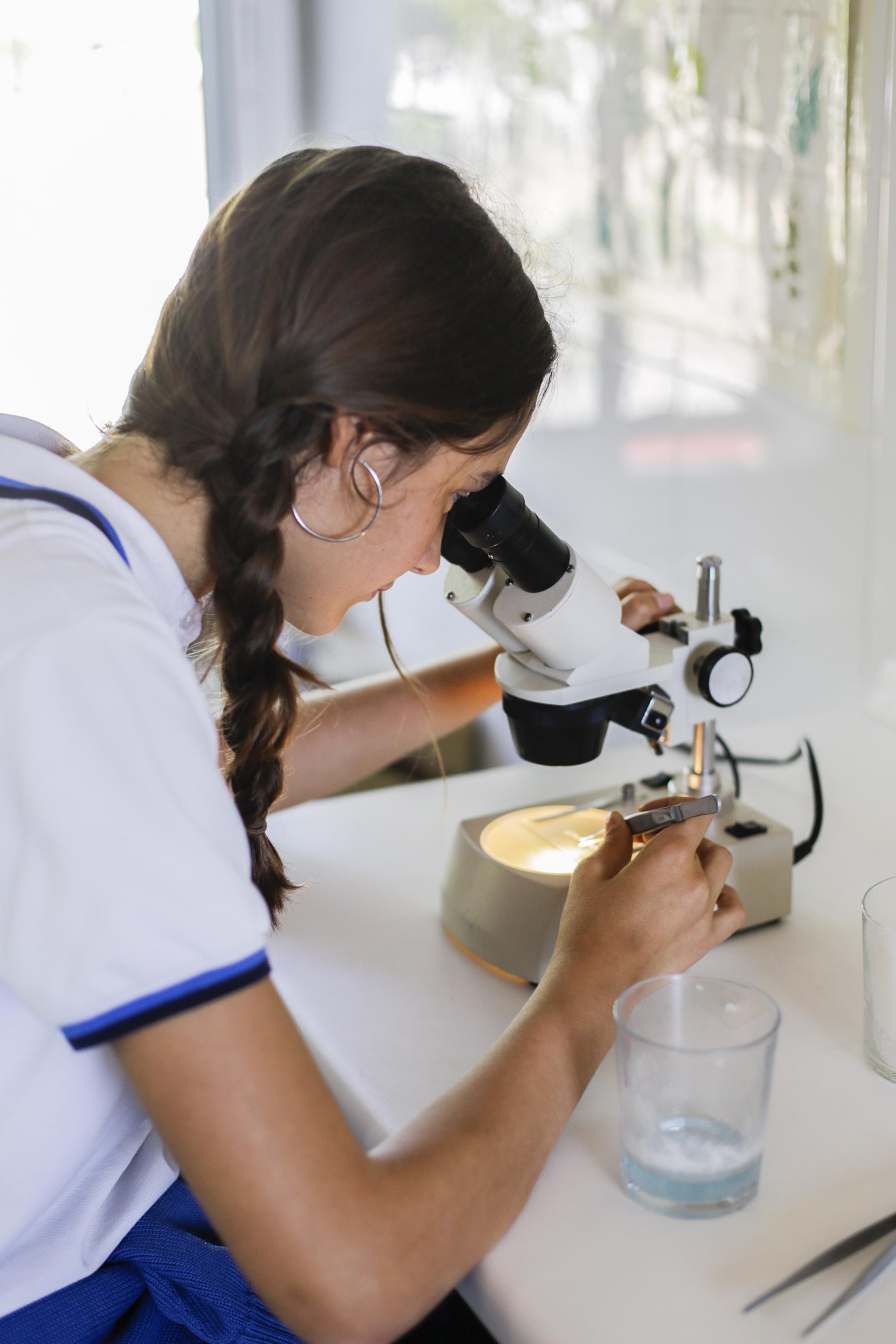 nina-quimica
